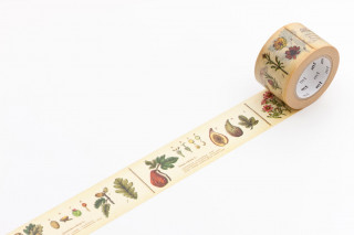 MT washi tape - encyclopedia